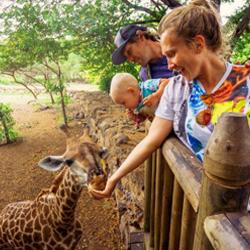 Welke wilde dieren parken ken jij?